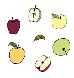 set apple colors hand vector image