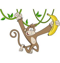 funny monkey with banana vector image