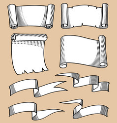 vintage hand sketched scrolls and ribbon banners vector image