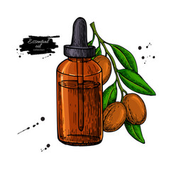 Argan essential oil bottle hand drawn vector