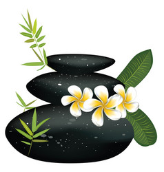 black pebble with flower vector image