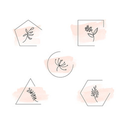 botanical logo outline drawing vecctor in set vector image