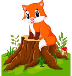 cartoon happy fox sitting on tree stump vector image