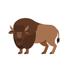 flat style of aurochs vector image