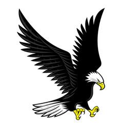 flying bald eagle icon vector image