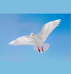 Gull in blue sky vector