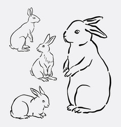 rabbit bunny hand drawing style vector image