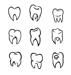 Set of teeth vector
