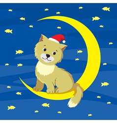 Cat and moon vector image vector image
