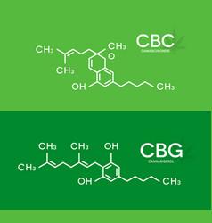 Cbc and cbg formula cannabichromene vector