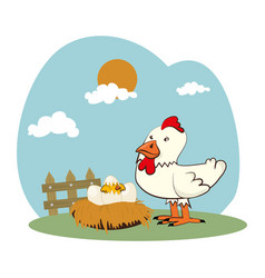 chicken farm isolated icon vector image