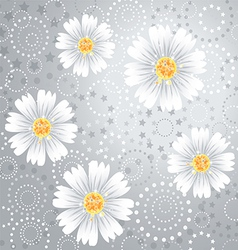 Daisy flowers on gray background vector image