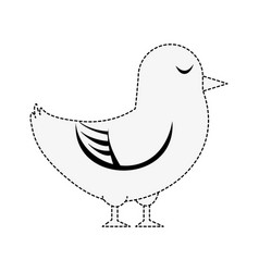 dove cute bird vector image