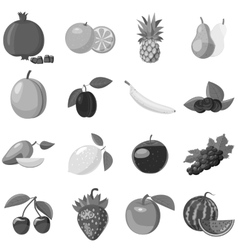 Fruit icons set gray monochrome style vector
