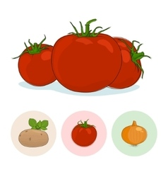 Icons Tomatoes Potato Onion vector image
