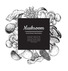 Mushroom hand drawn frame isolated sketch vector