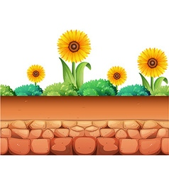 Sunflowers and bush on the ground vector