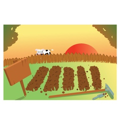 Sunset and Cow on vegetable garden vector image