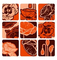 Poppy squares vector image
