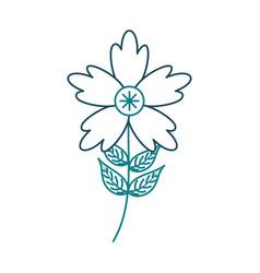 crocus flower petal leaves stem natural ornament vector image