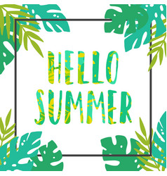 hello summer tropical leaves frame vector image