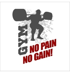 No pain no gain - label for flayer poster logo t vector image