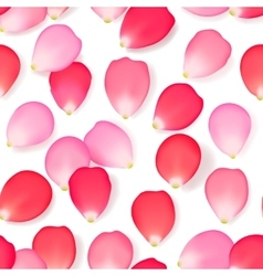 Seamless pattern with rose flower petals vector image
