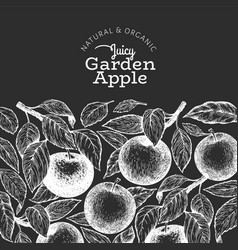 apple branch design template hand drawn garden vector image