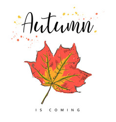 autumn is coming autumn leaves hand drawn vector image