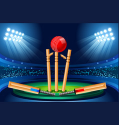 Cricket stadium wallpaper vector