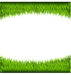 Grass borders vector