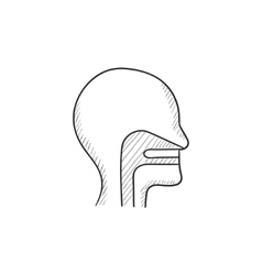 Human head with ear nose throat sketch icon vector