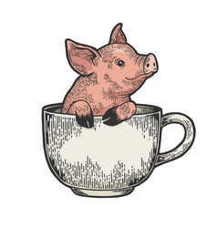 Little pig in coffee cup color sketch engraving vector