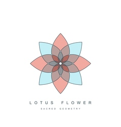 Lotus flower sacred geometry vector
