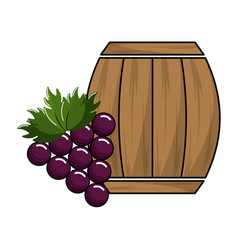 Wool barrel with grape gruit tasty vector