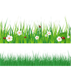 Seamless green grass vector image