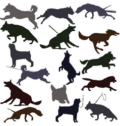 Dog silhouettes on white background vector