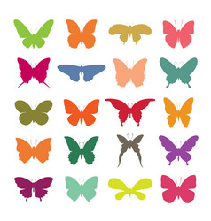group colorful butterfly on white background vector image