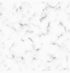 Marble pattern white and gray marble vector