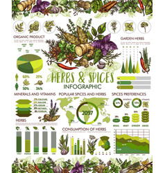 Seasonings herbs and spices infographic vector