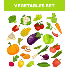 Vegetables and veggies vegetarian icons set vector