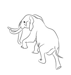 elephant graphic line goes vector image vector image