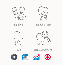 Tooth dental diagnostics and toothpaste icons vector