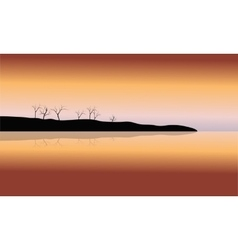 Silhouette of dry tree in islands vector image vector image