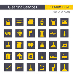 cleaning services icons set vector image