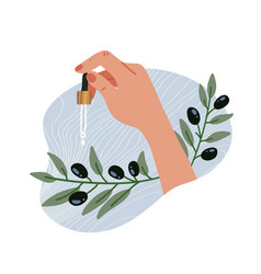 essential oils olive oil and branch elegant vector image