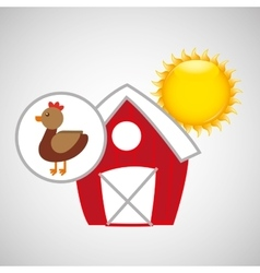 Farm countryside animal chicken design vector
