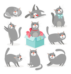 gray cute cats collection vector image