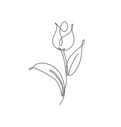 one single line drawing beauty fresh tulip flower vector image