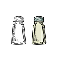 salt shaker vintage black and color vector image
